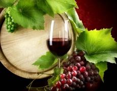 Истината е в чаша вино