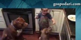 Момченце храни кучета с вилица