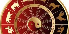 Каква ще е годината на Огнения Петел за различните зодии? (ЧАСТ 2)