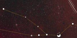 Седмичен хороскоп на зодия Телец (20 април до 20 май)