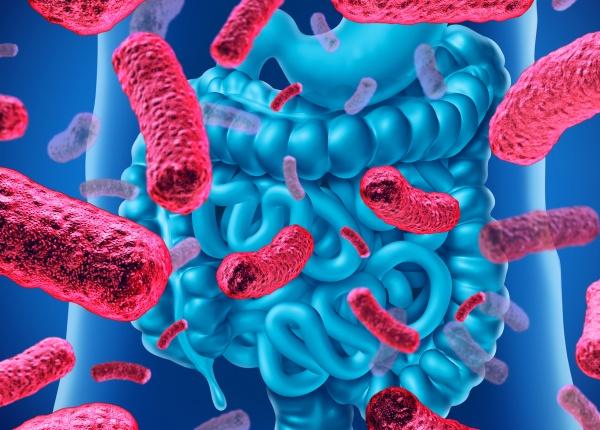 Разликата между пробиотиците и пребиотиците и как да ги приемате
