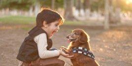 5 причини, че детето ви трябва да има домашен любимец