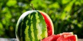 Полезните свойства на семената от диня