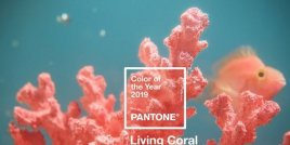 "Зад цвета на институт ""Pantone"" за 2019 се крие важен смисъл"