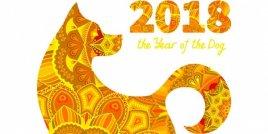 Какво казва китайският ви зодиакален знак за вас