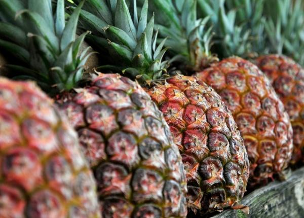 Не просто тропически плод: лечебните ползи от ананаса за цялото ви тяло