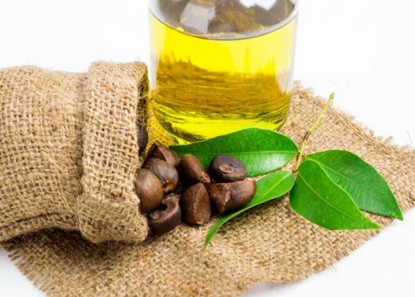 Полезните свойства на камелиевото масло