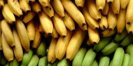 Узрелите срещу Неузрелите Банани: Кои са по-добри за вас?