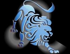 От какво се възбужда Лъвът?