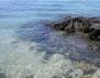 Козметика от морето (част 1)