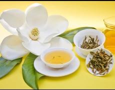 Най-полезните билки срещу настинки