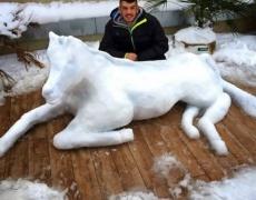Леденото изкуство, което ще разтопи сърцето ви (видео)