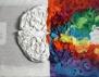 Кое полукълбо на мозъка си използваш и какво разкрива то за теб?