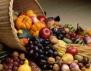 Топ 5 на най-полезните зимни плодове