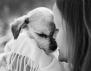 Колко голяма може да бъде любовта между човек и животно? (снимки)