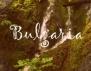 Културен Шок! България през погледа на останалия свят