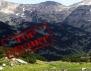 Мурсалски чай – българското ЧУДО, пазено в тайна години наред