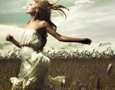 Притча за силата на търпението и постоянството