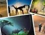 Как се забавляват децата по света - 32 вълшебни снимки