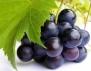 5 мита за гроздето