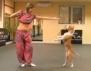 Този Питбул ще ви заслепи със своите арабки танци
