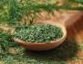 Копърът – средство срещу много болести!