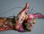 Тест с палците разкрива истинския ни темперамент