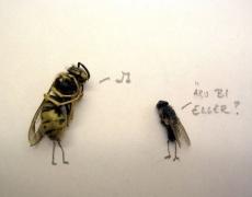 Притча за съзнанието на пчелата и мухата