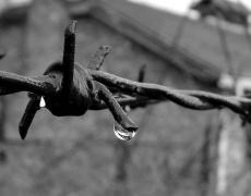 Полското градче Освиенцим помни ужаса на миналото