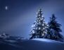 Учете децата на истинския смисъл на Коледа!