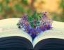 10 причини да не се отказваш от четенето на книги