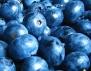 Боровинките намаляват последиците от вредната храна