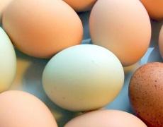Яйцата намаляват риска от диабет