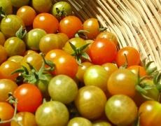 Как запазваме продуктите свежи
