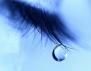 Струват ли си сълзите?