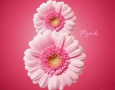 Как празнуват 8–ми март по света