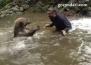 Необикновено приятелство между човек и мечка