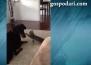 Нахално коте се закача с куче