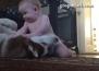 Бебе закача хъски