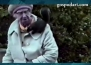 Баба се сприятелява с катерици