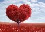 6 неща за любовта, които никога няма да разберем