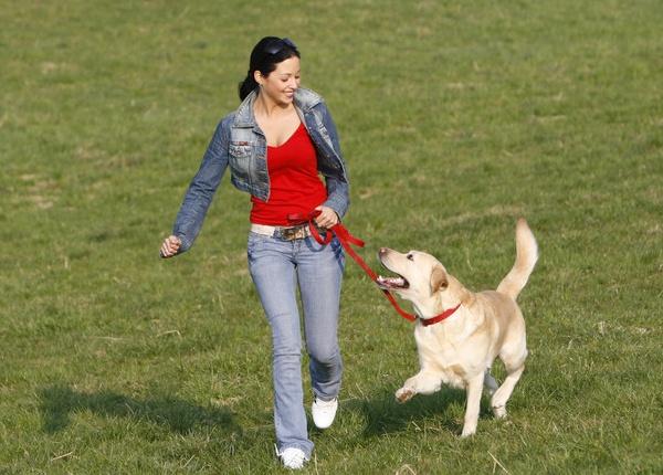 10 причини, поради които животът ми щеше да е по-добър, ако можех да излизам с кучето си