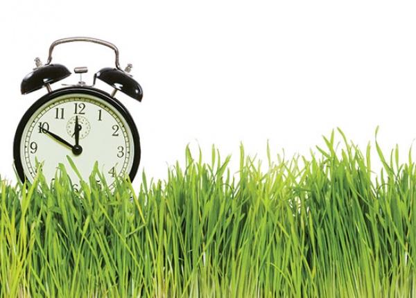 Зеленият час