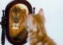 Тест: Имате ли добра самооценка?