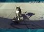 Котка скейтбордист показва невероятни умения