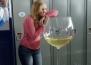5 причини да не се чувствате гузно за допълнителната чаша вино