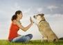 Вашето куче предпочита да понижите тона и да говорите само с жестове