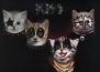 Обложки на известни албуми, пресъздадени с котета