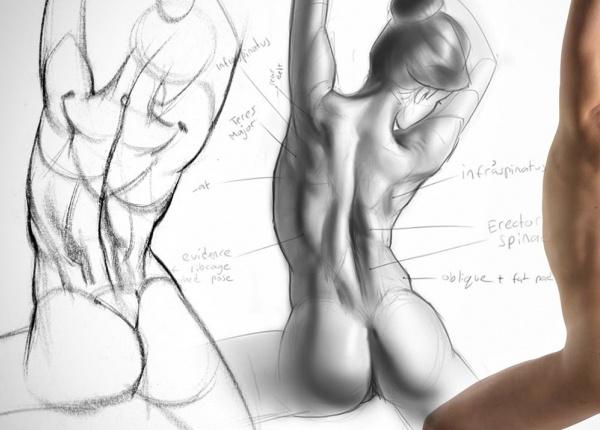 7 упражнения за разтягане, които предотвратяват и облекчават болката в таза и кръста