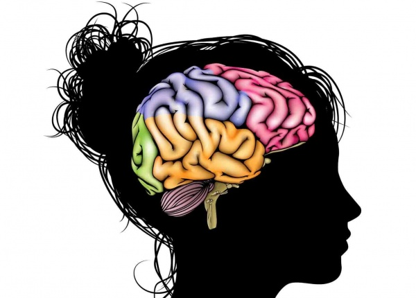 9 навика, които помагат за регенериране на мозъчните клетки
